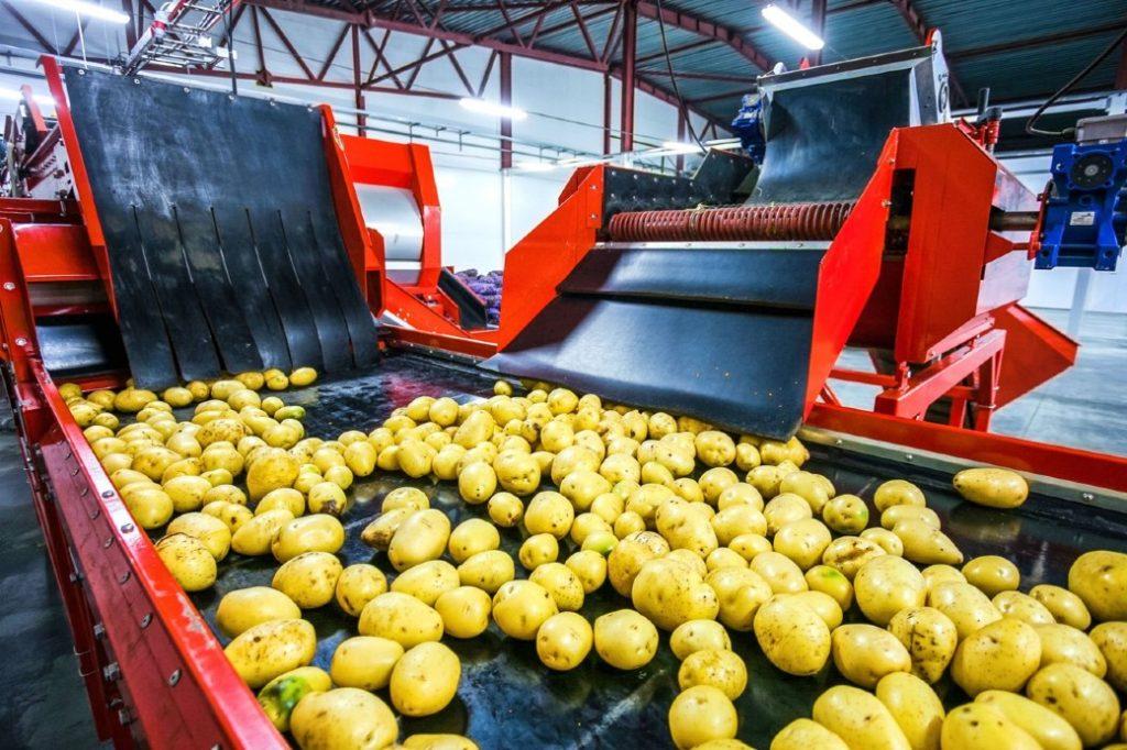 food factories in turkey