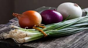 turkey onion suppliers