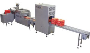 Egg packing box machine