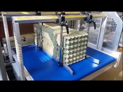 automatic egg packing machine