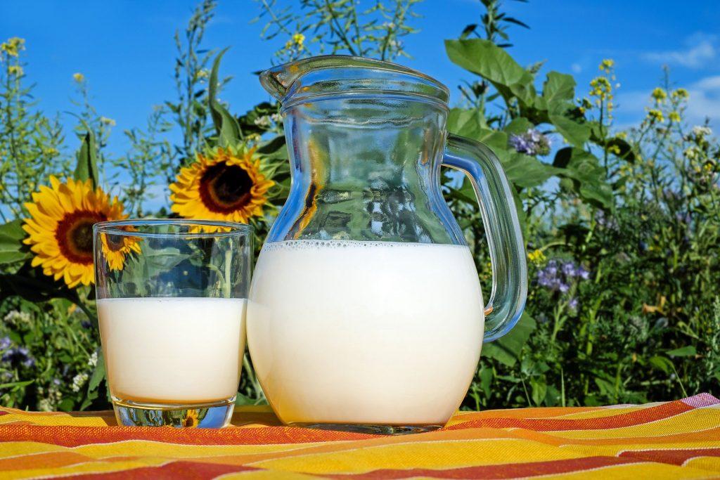 milk filling machine in glass bottle