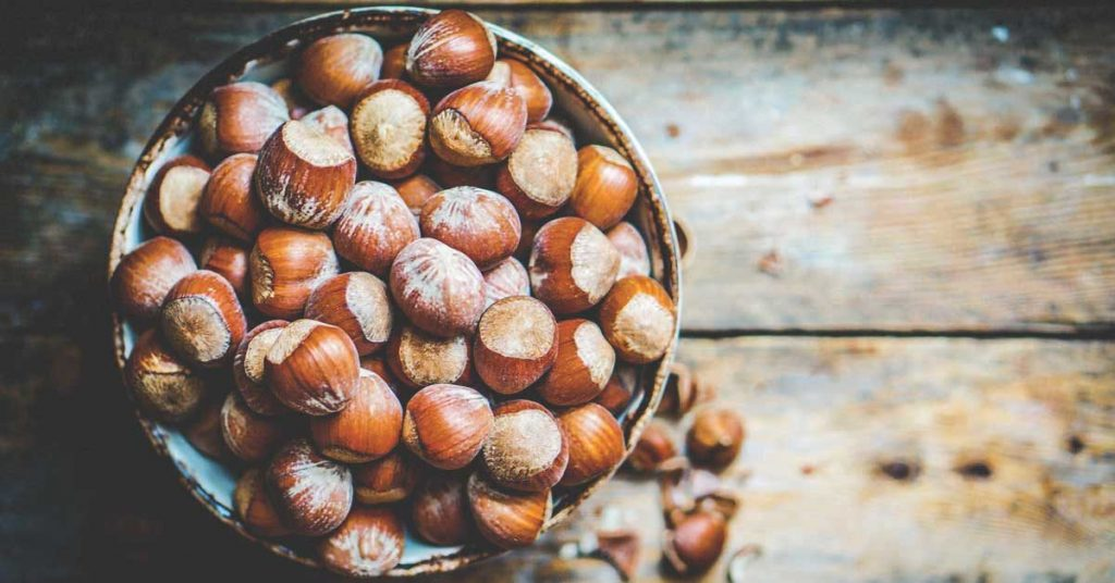 Hazelnut company in Turkey