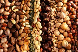 Nuts companies in Turkey