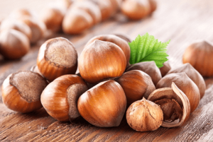 hazelnut business in Turkey