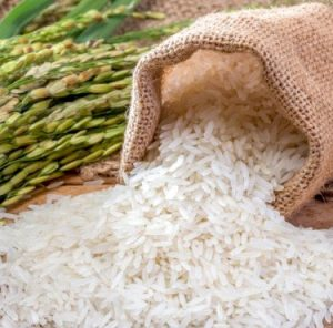 bulk rice importer