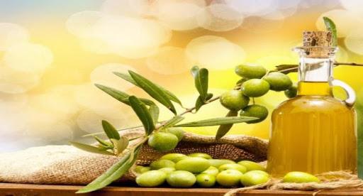 Import olive oil Florida