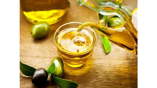 Moroccan olive oil wholesale