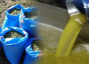 Olive oil suppliers Johannesburg
