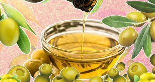Olive oil wholesalers … the best Olive oil wholesale price