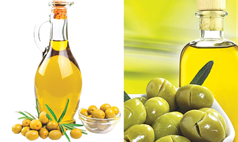Turkish olive oil producers