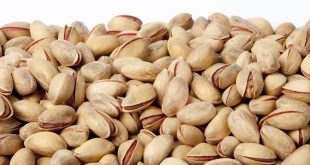Tasty Turkish pistachios wholesale from 7 companies