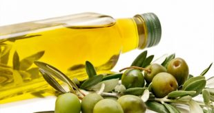Where to get wholesale price of olive oil