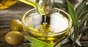Bulk olive oil suppliers in India … the best olive oil supplier