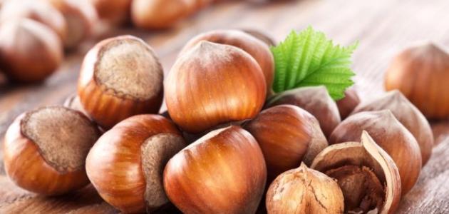 Hazelnut producers in turkey
