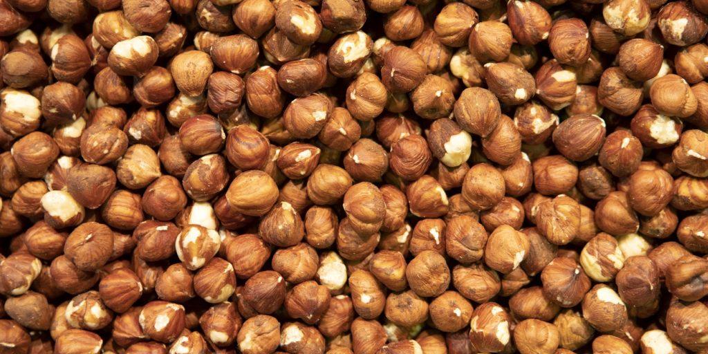nut factories